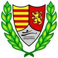 Escudo del Unión Deportiva Aragonesa
