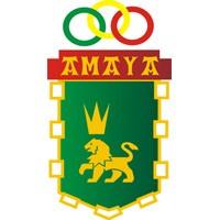 Amaya primer equipo club deportivo amaya for Piscinas amaya